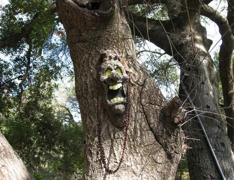 scary_trees_9b