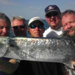 King Mackerel King Fish Caught in Bonita Springs