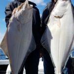 Halibut and rock fish trips in Homer, AK,Seward AK